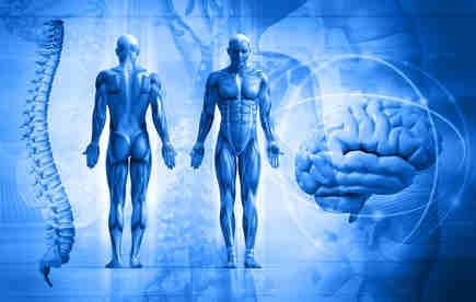 Rückenschmerzen können durch viele Ursachen entstehen